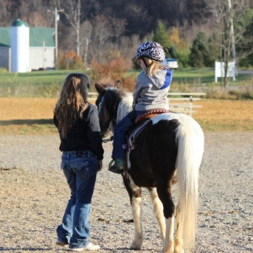 little-girl-on-horse-with-mom