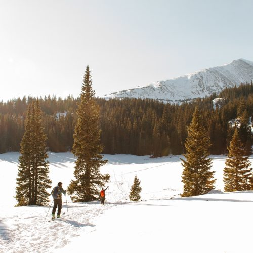 A people walking on a snowy hill near trees with a snowy mountain and a clear sky in the background